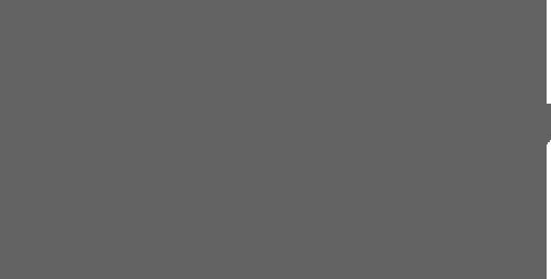 Sojus 7 Logo grey